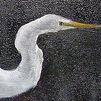 Oil painting  Egret in Flight by Barbara Haviland