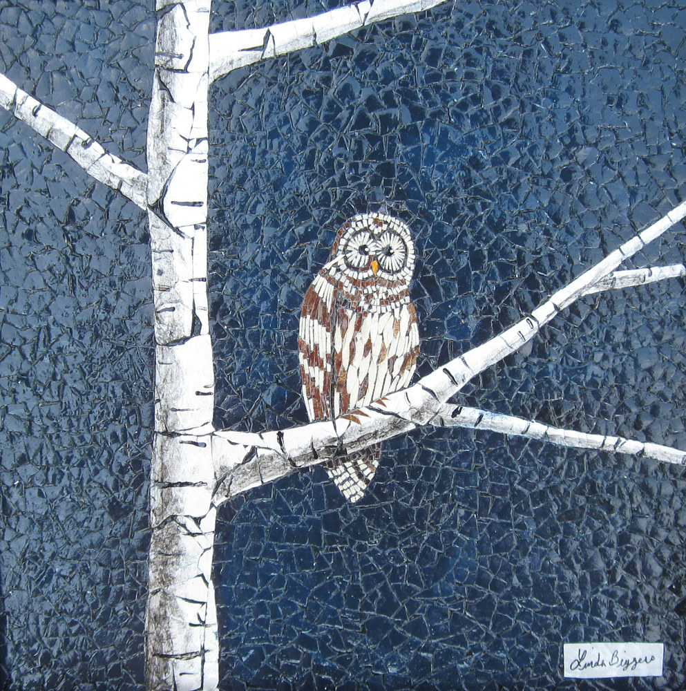 Little Barred Owl by Linda Biggers