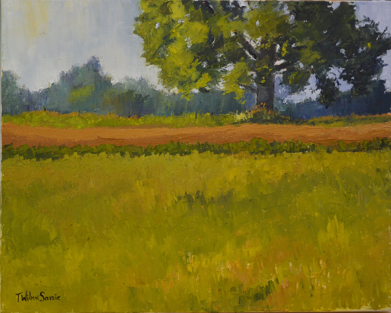 Summer - oil on gallery canvas 16 x 20 14-0716 by Patricia Savoie