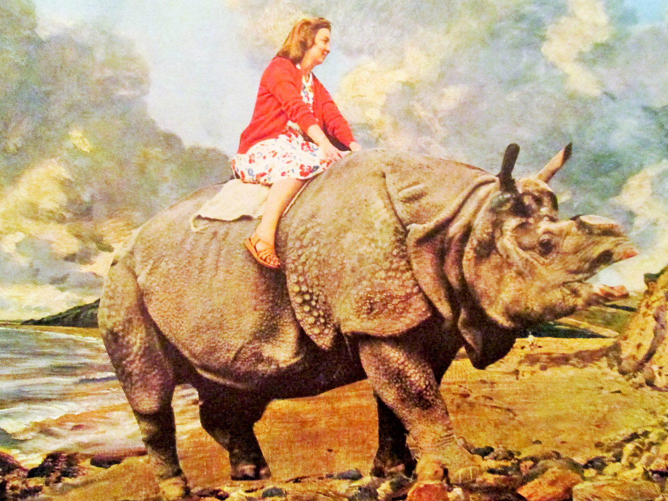 My Vacation Riding a Rhino  by Jo Ann Tunnell Muench