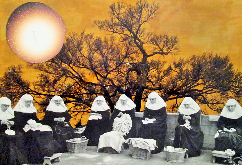 Nuns Remaining Silent Under the Strange Sun  by JoAnne T. Muench