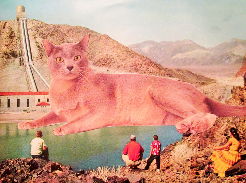 The Giant Cat  by JoAnne T. Muench