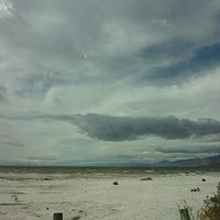 Salton Sea by Susan Keown