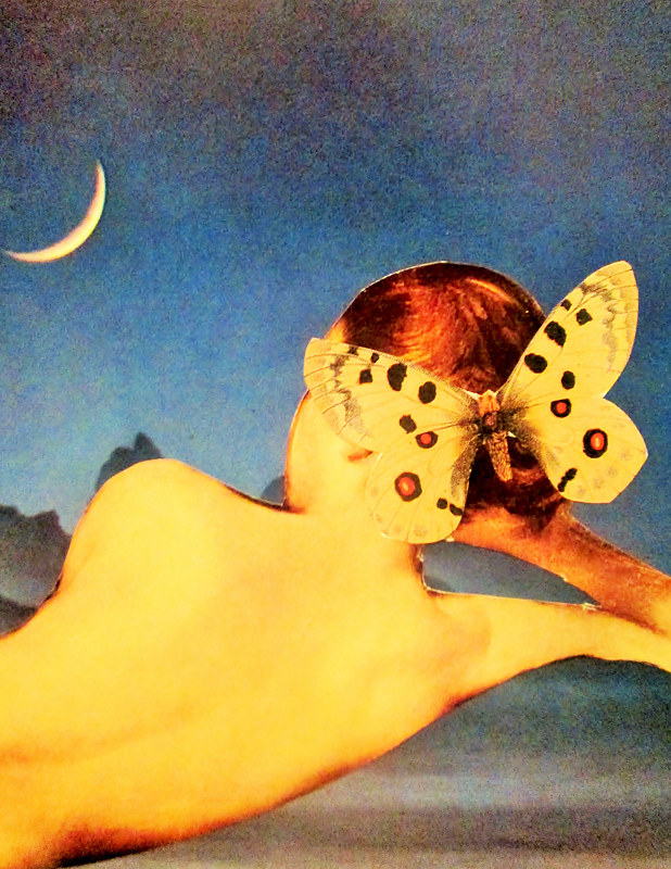 Nude With a Butterfly  by JoAnne T. Muench