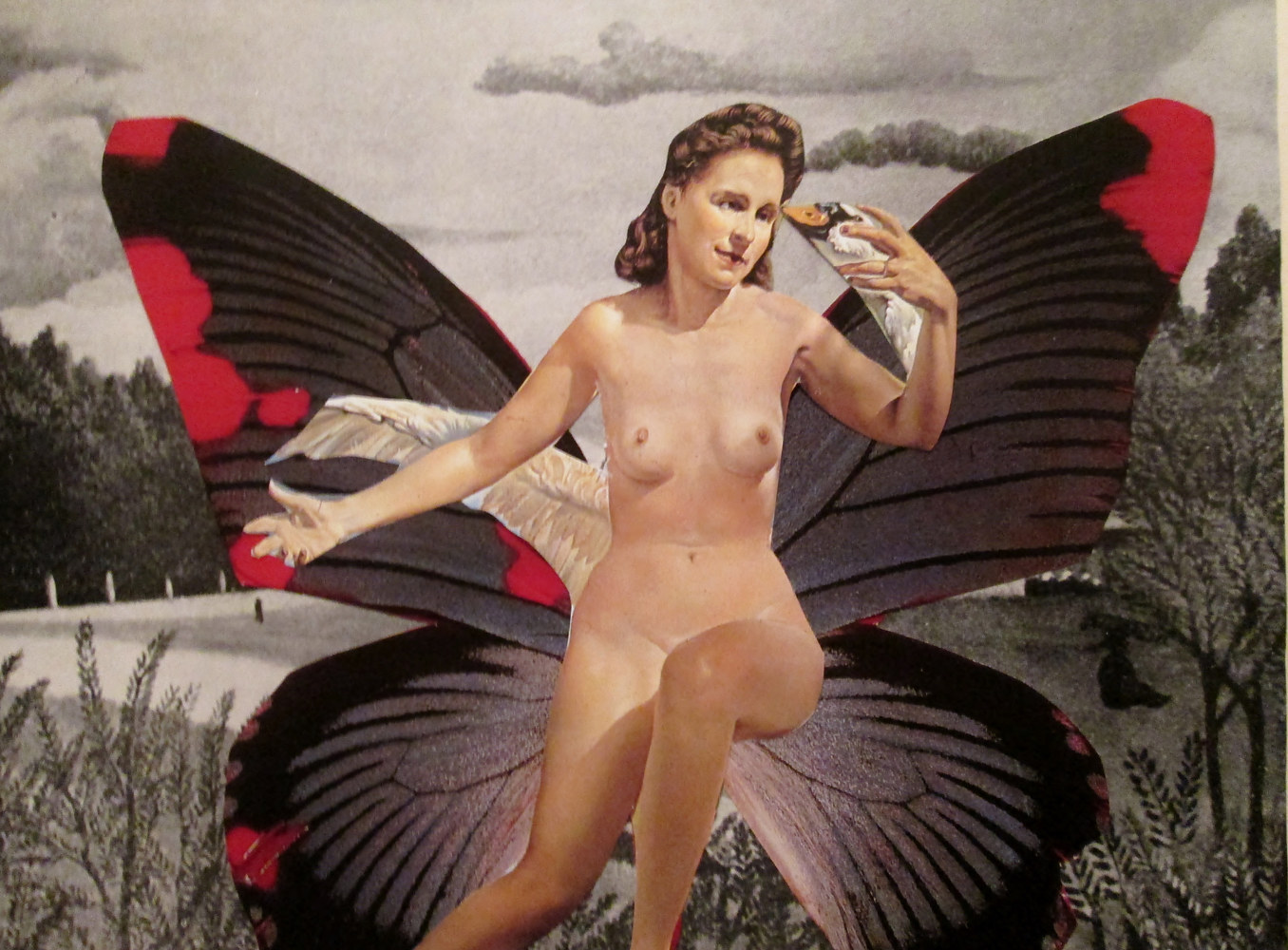 The Butterfly Nude  by Jo Ann Tunnell Muench