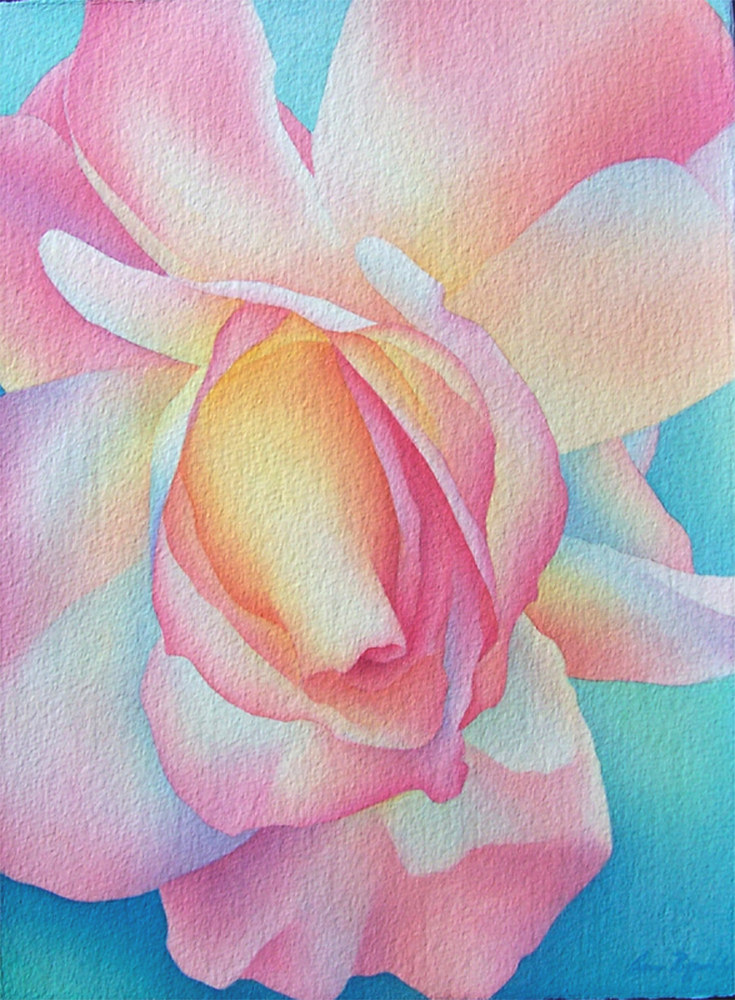 Watercolor Summer Rose by Anne Popperwell