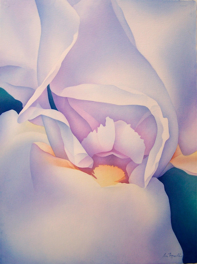 Watercolor Blue Iris by Anne Popperwell