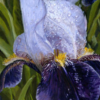 Oil painting FLOWER by Tom Furey by David Eater