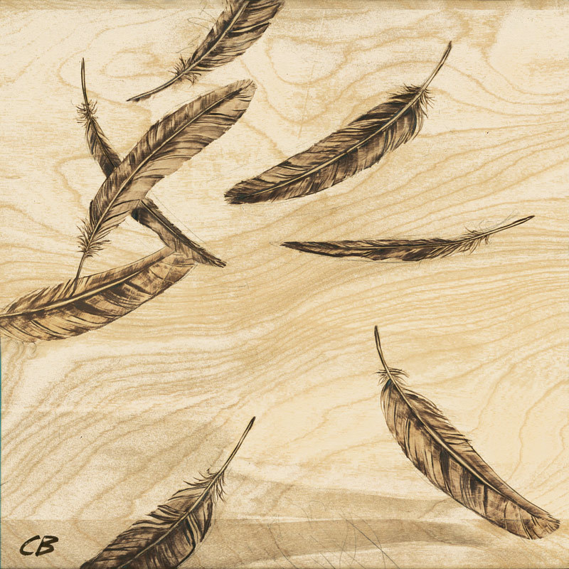 Print C-138 Falling_Feathers by Cody Blomberg