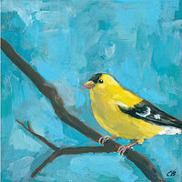 Print Goldfinch C-117 by Cody Blomberg