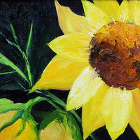 Oil painting  Sunflowers by Barbara Haviland