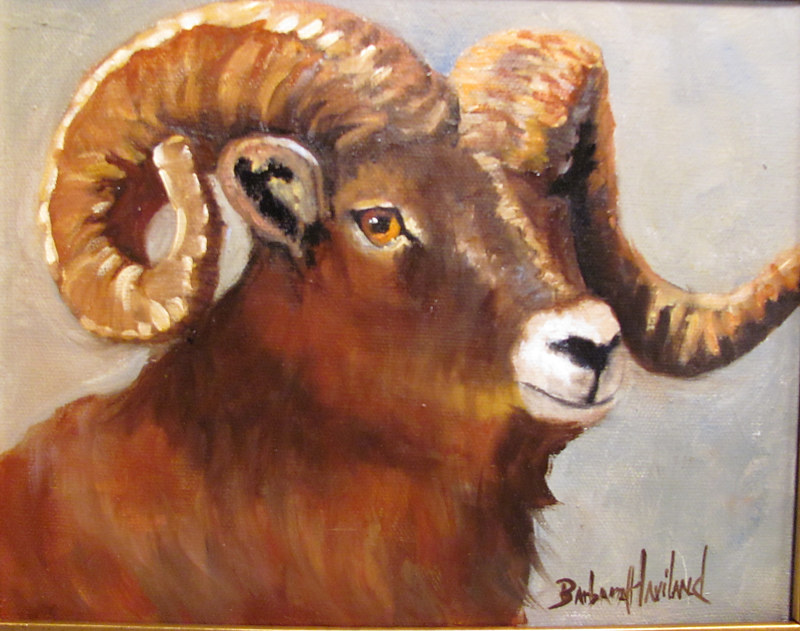Oil painting  Ram  by Barbara Haviland