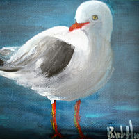 Oil painting Seagull by Barbara Haviland