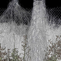 """The Ghost Citadel - Rolled Fencing and Vines"" by Hunter Madsen"