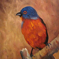 Oil painting Bunting Bird by Barbara Haviland