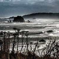 Cape Blanco Looking North by William Kent