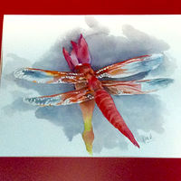 Red dragonfly by Robert Mcelwee