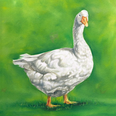 Oil painting Goose 2 by Richard Mountford