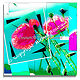 Pink Poppy Puzzle pr facemount 30x30 by Michel Bourquard