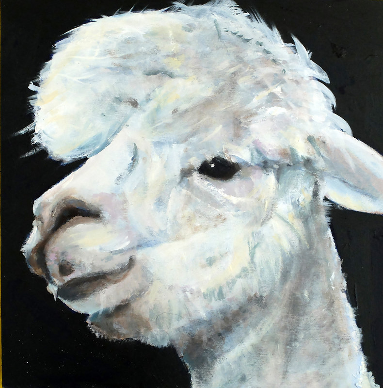 Oil painting Highwater Llama by Edith dora Rey