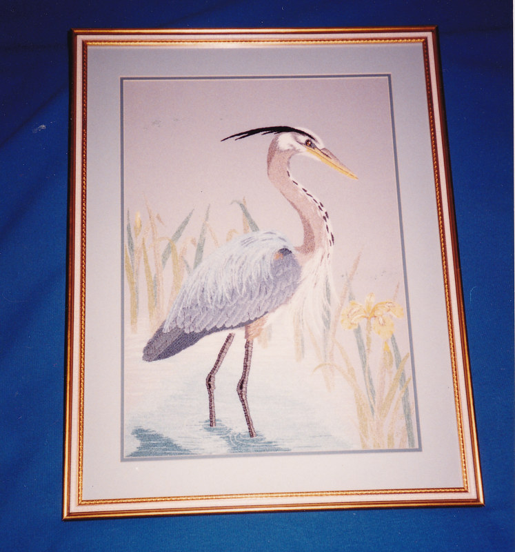 Great Blue Heron by Mary Lee Chisholm-morgan