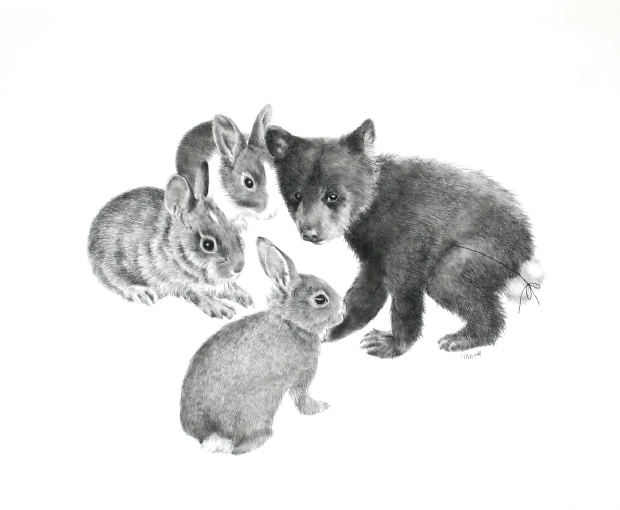 Drawing Four Bunnies by Ellen Cornett