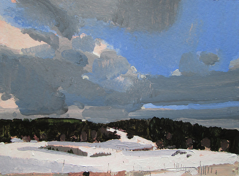 Acrylic painting Coyote Hill, February 7 by Harry Stooshinoff