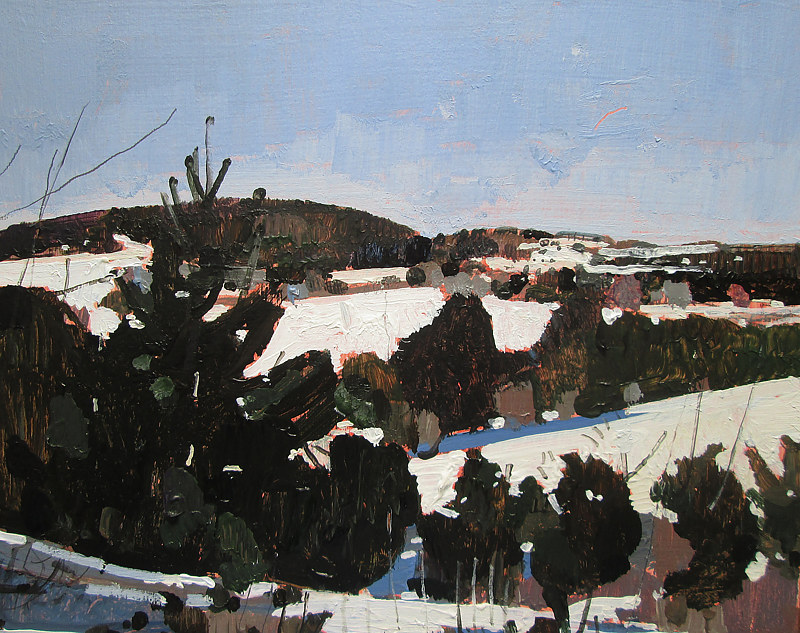 Acrylic painting White Valley by Harry Stooshinoff