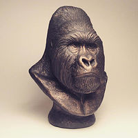 Painting Mountain Gorilla Silverback Bust by Jason  Shanaman