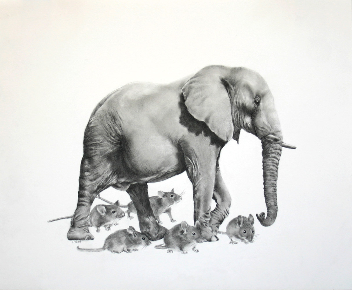 Drawing The Herd by Ellen Cornett