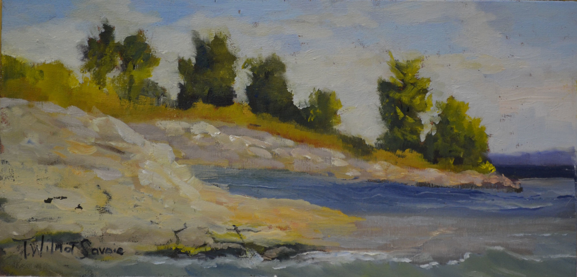 Ebb and Flow 11, 6 x 12; #36-0714 by Patricia Savoie