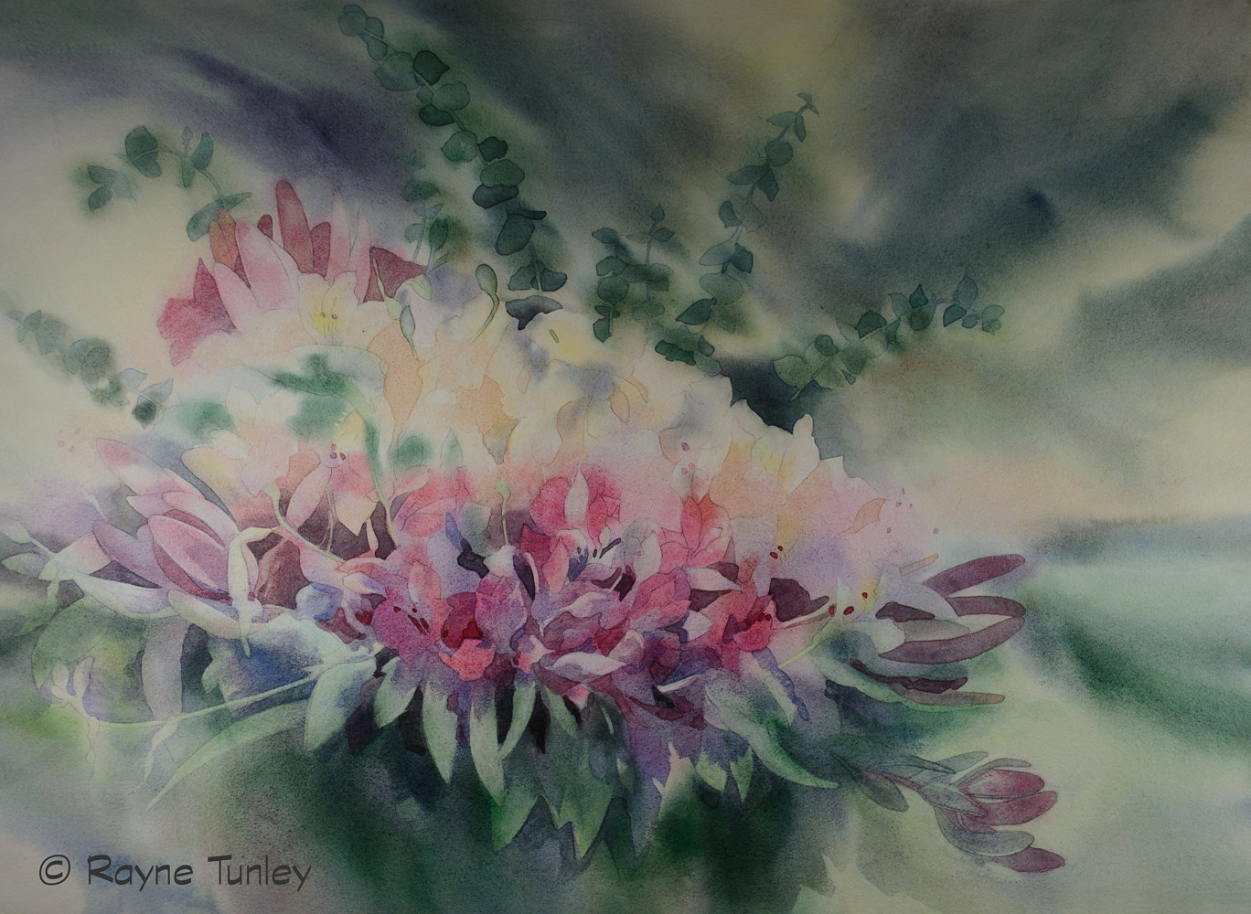 "Rayne Tunley, ""Wild Orchid"", 22in x 30in, Watercolour by Rayne Tunley"