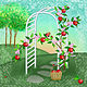 A is for Arbor and Apples by Valerie Lesiak