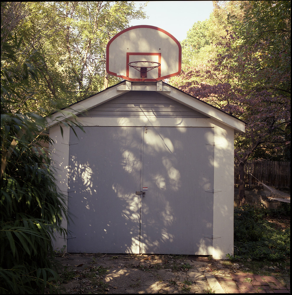 Shady Hoop by Stuart Diekmeyer