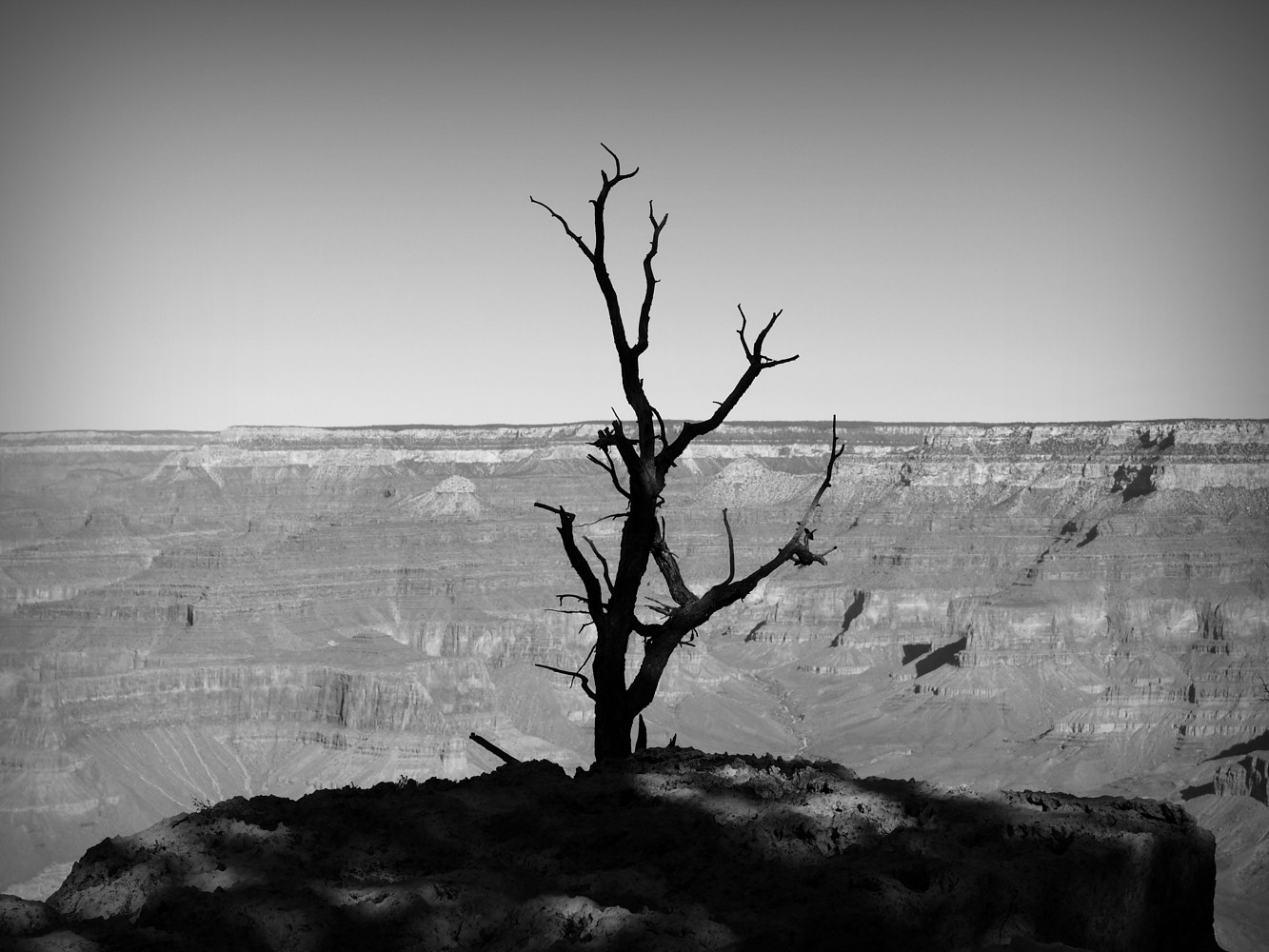 Grand Canyon by Stuart Diekmeyer