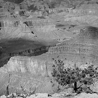 Grand Canyon 1 by Stuart Diekmeyer