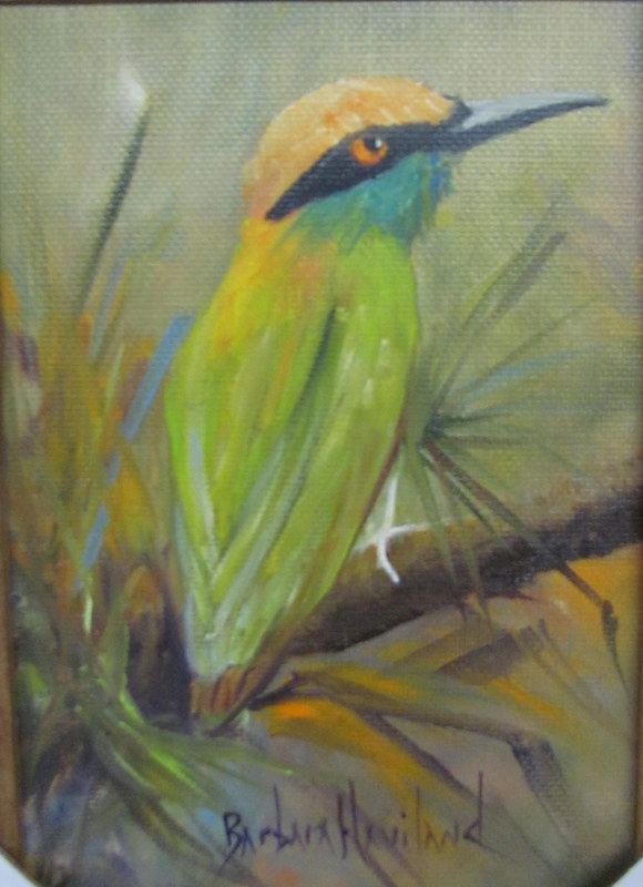 Little Green Bee Eater Bird by Barbara Haviland
