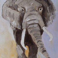 Elephant by Barbara Haviland