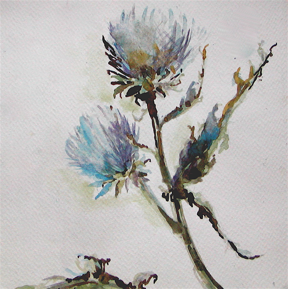"Watercolor ""Scottish Thistle"" by Linnie (Victoria) Aikens Lindsay"
