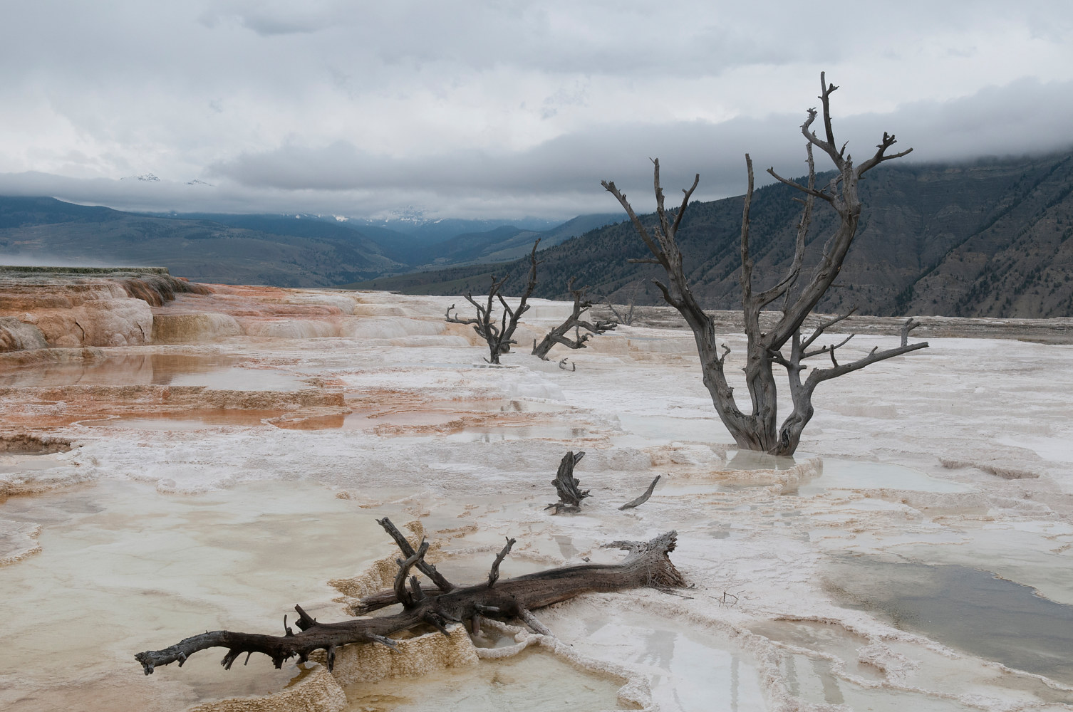 Landscape Yellowstone #3 by Kathleen Gross