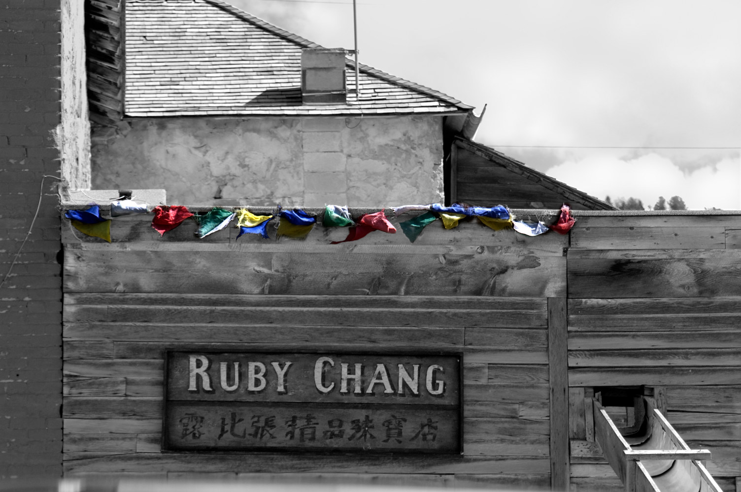 Ruby Chang by Kathleen Gross