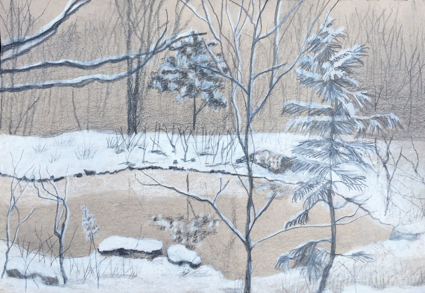 Snow Pond by Jayne Crawford