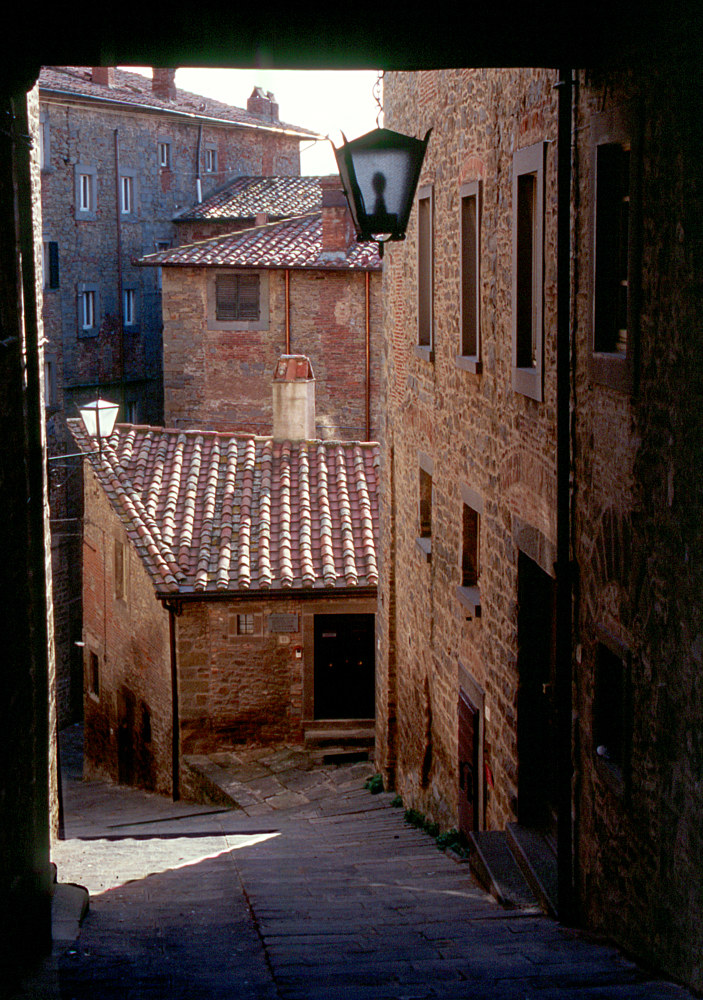 Cortona Street by Kathleen Gross