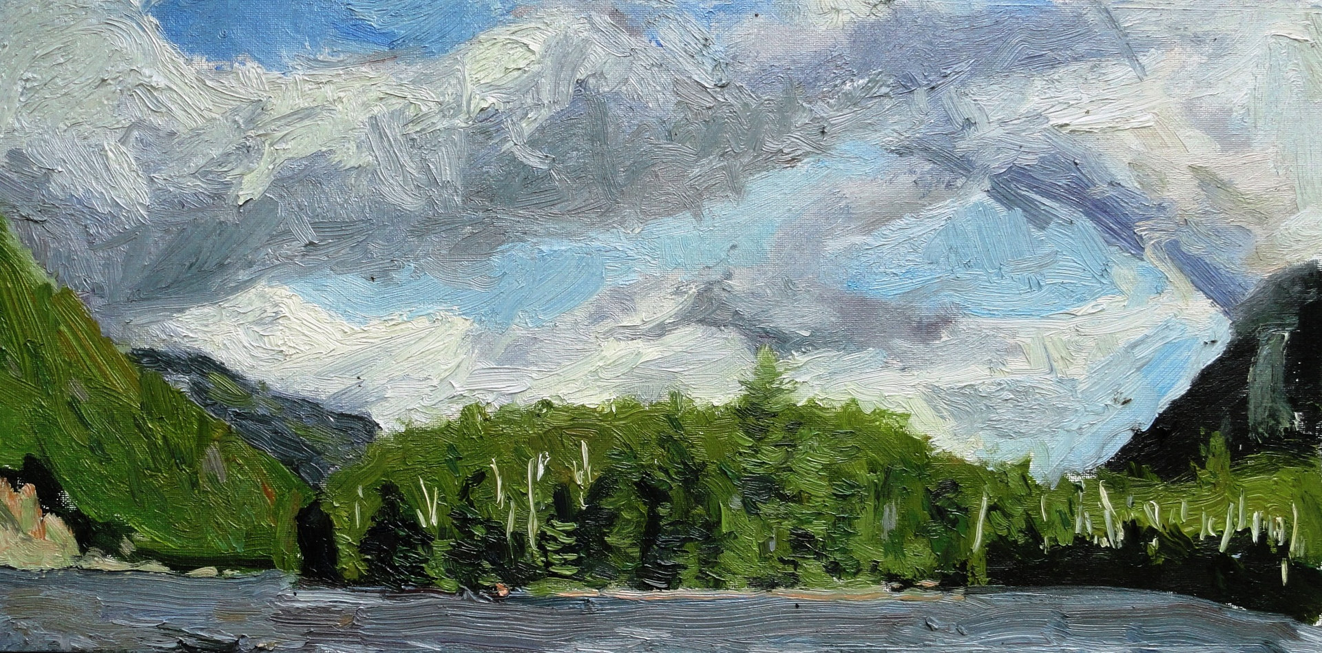Gale force on Chapel Pond by Michael  Gaudreau