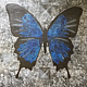 Acrylic painting Le Papillon by Darren Hurst
