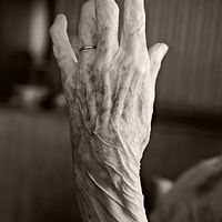 Aged Hand by Marc Brisson