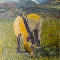 "Acrylic painting ""Julies Horse"" by Carol Ross"