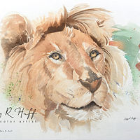 Painting Lion by Gary Huff