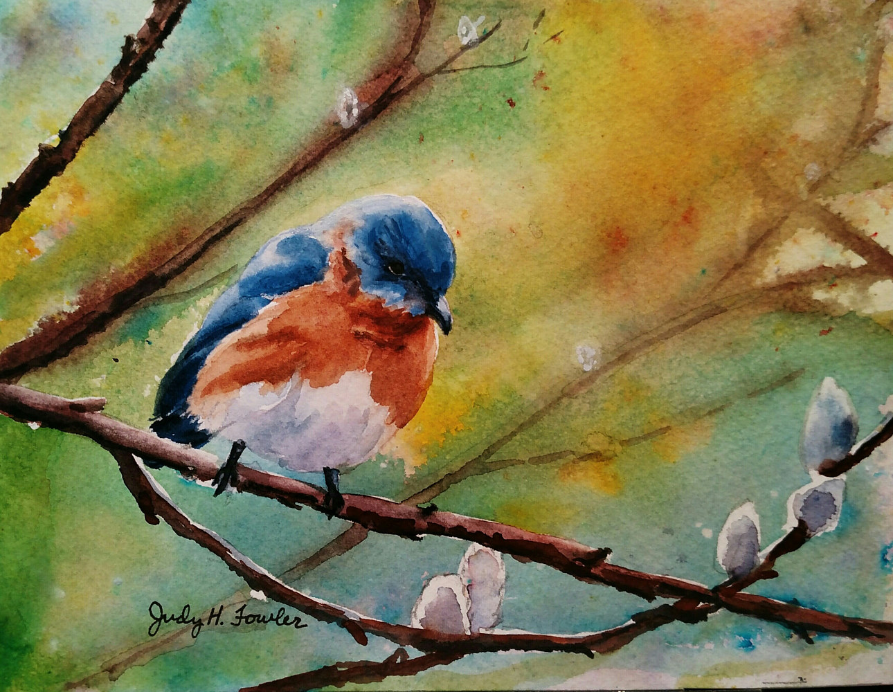 Watercolor Blue bird by Judy Fowler