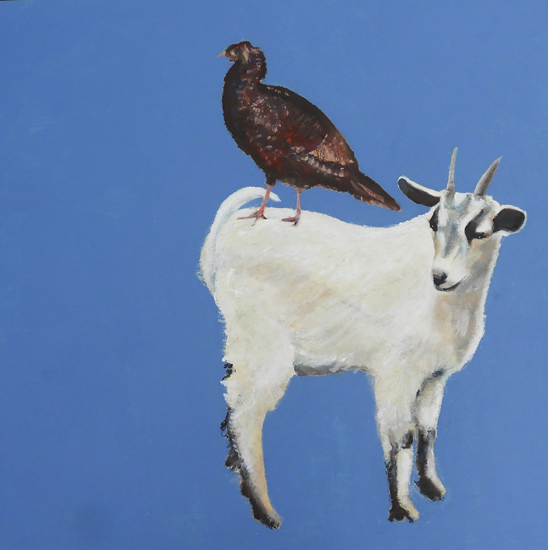 Oil painting Turkeygoat, 2017 by Edith dora Rey